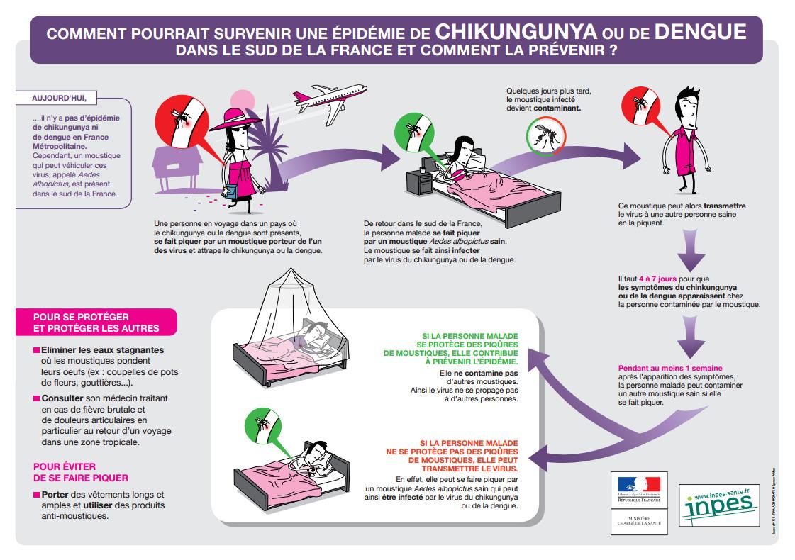 comment pourrait survenir une pid mie de chikungunya ou de dengue dans le sud de la france et. Black Bedroom Furniture Sets. Home Design Ideas